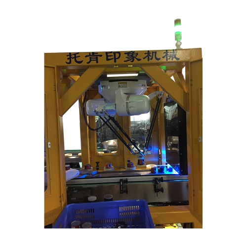 Turtle paste robot automatic packaging production line